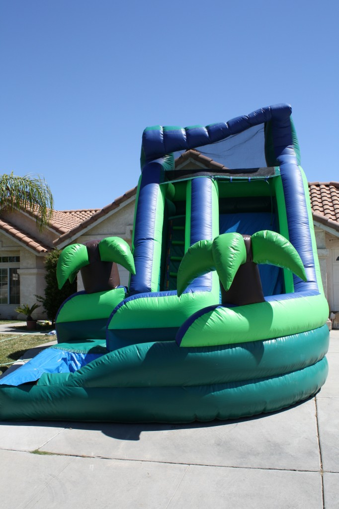Tropical Curvy Water Slide $185.00!!! 16 High, 13 Wide, 20 Long