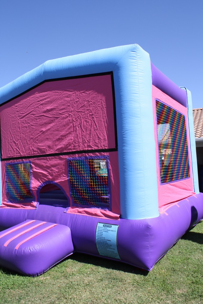 Pink & Purple fun House, 13x 13, $75.00 all day